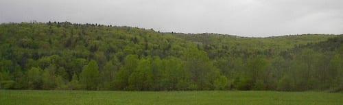 Fields. Hills. Brook.