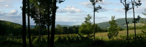 Protected views. 5 acres.