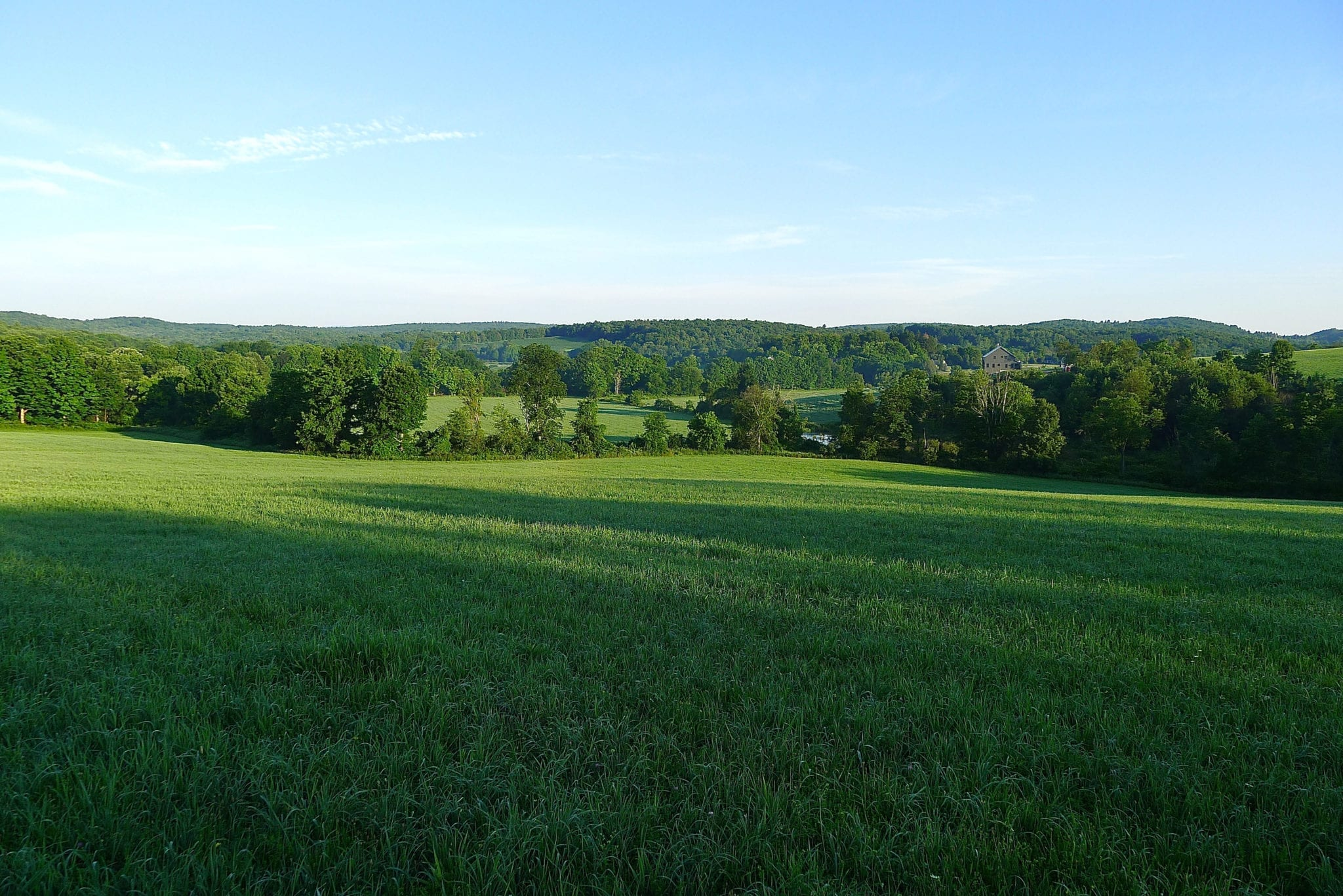 Rolling Hill Views. 6.11 Acres.